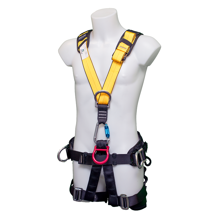 5 point Harness